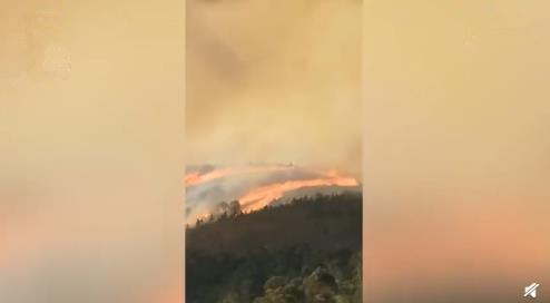 云南个旧市凤尾山发生森林火灾